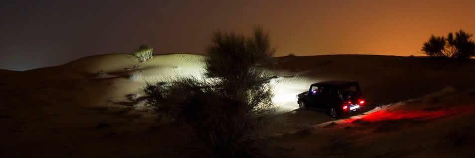 night-safari01